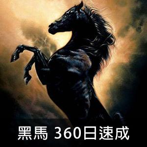 大黑馬 期貨機械化操盤 (360天)-速成方案