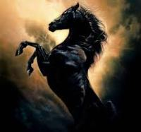 機械化巨子-黑馬